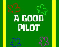 A-good-pilot