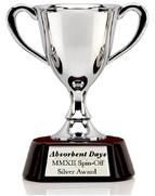 AD Silver Award