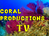 Coral Productions TV