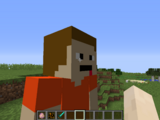 The SBFW Minecraft Mod
