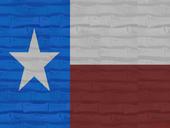 Texas blank