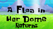 A Flea in Her Dome Returns