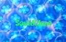 Squidclone