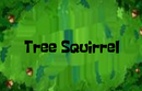 Treesquirrel