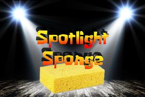 Spotlight sponge