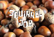 Squirrel job