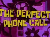 The Perfect Phone Call