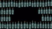 Bottle Burglars Blank