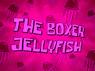 The-Boxer-Jellyfish