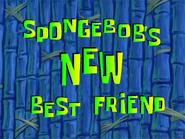 Spongebob's new best frend