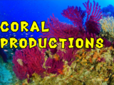 Coral Productions company overview