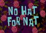 NoHatForNat
