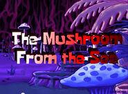 Mushroom in Under Water