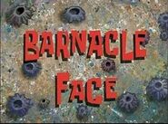 300px-Barnacleface