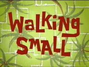Walking Small