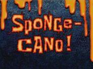 300px-Sponge-Cano!
