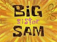 300px-Big Sister Sam
