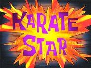300px-Karate Star2
