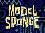 300px-Model Sponge
