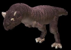 Sashrenosaurus