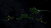 Xiaan Fleet