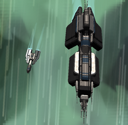 Cotc jumping