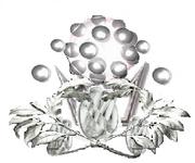 Sdc emblem