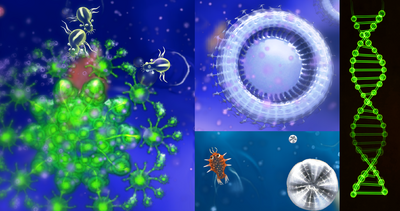 CellStageScenesAndDNA