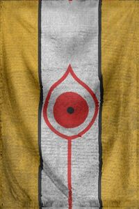 Aynach Flag
