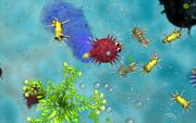 168757-Spore Cell Stage 8