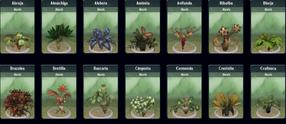 Sporepedia flora