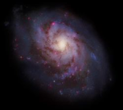 Eupherion Galaxy
