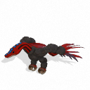Aaryxkota (adult)