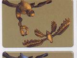 Тамаранский летун