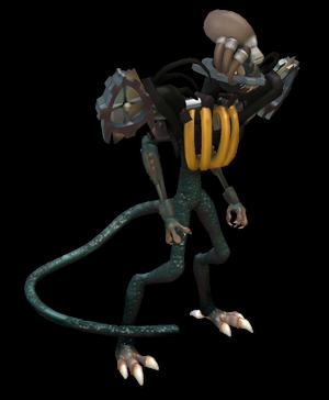 Maethorui