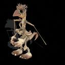 File:Skeletal Rambo.png