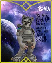 Koala Lore Card