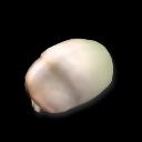 Крысокрот