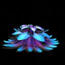 Quadrantia Weed