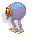 Яйцеглаз