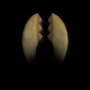 Челюсти 4