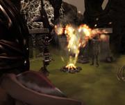 WitchesPythonissam