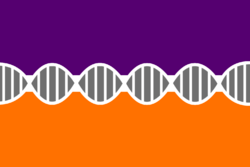 Praestol Flag