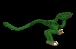 Zevalophus animal