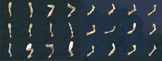 24 New Limbs