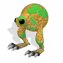 Common Orbib