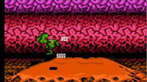 Battletoads NES - Walkthrough (no warps) - part 1