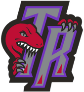 Toronto raptors 1995-2006 aa