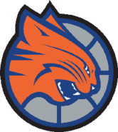 Charlotte bobcats 2005-2008 a