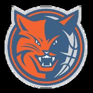Charlotte bobcat 2007-2011 a